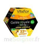 Acheter Vitaflor Bio Gelée royale 1500mg Solution buvable 20 Ampoules/15ml Promotion à PERTUIS