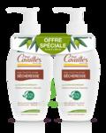 Acheter Rogé Cavaillès Hygiène intime Soin naturel Toilette Intime Sécheresse 2x250 ml à PERTUIS